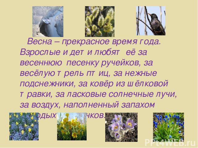Весна – прекрасное время года. Взрослые и дети любят её за весеннюю песенку ручейков, за весёлую трель птиц, за нежные подснежники, за ковёр из шёлковой травки, за ласковые солнечные лучи, за воздух, наполненный запахом молодых листочков.
