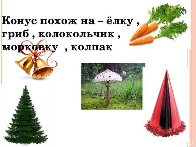 Конус похож на – ёлку , гриб , колокольчик , морковку , колпак