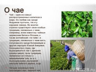 О чае Чай – один из самых распространенных напитков в мире. Он любим как среди б