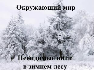 Окружающий мир Невидимые нити в зимнем лесу Окружающий мир