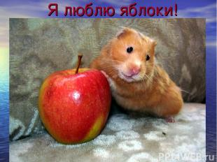 Я люблю яблоки!