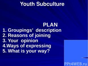Youth Subculture PLAN 1. Groupings' description 2. Reasons of joining 3. Your op