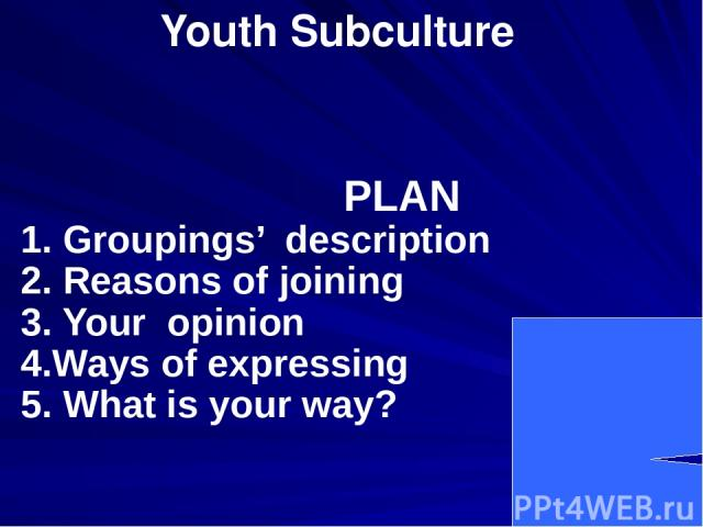Youth Subculture PLAN 1. Groupings' description 2. Reasons of joining 3. Your opinion 4.Ways of expressing 5. What is your way?