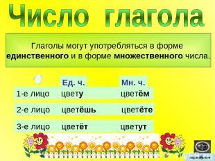 Глаголы могут употребляться в форме единственного и в форме множественного числа