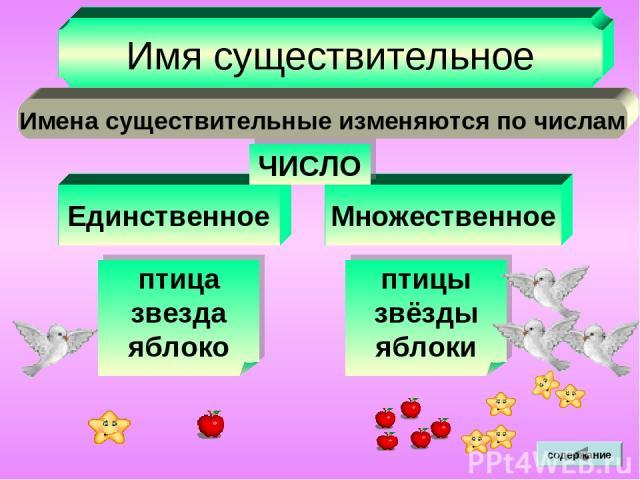 Единственное Множественное Имя существительное ЧИСЛО Имена существительные изменяются по числам птица звезда яблоко птицы звёзды яблоки содержание