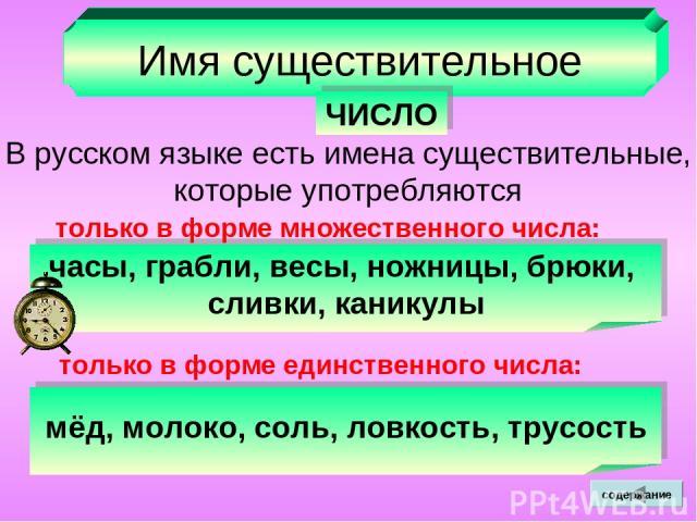 Имя существительное ЧИСЛО В русском языке есть имена существительные, которые употребляются часы, грабли, весы, ножницы, брюки, сливки, каникулы только в форме множественного числа: только в форме единственного числа: мёд, молоко, соль, ловкость, тр…