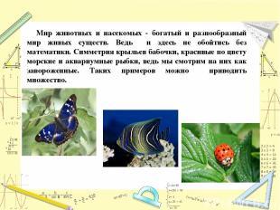 Мир животных и насекомых - богатый и разнообразный мир живых существ. Ведь и зде
