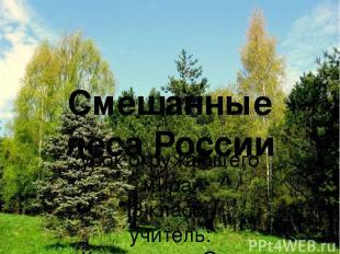 Смешанные леса России урок окружающего мира 3 класс учитель: Коновалова Ольга Ал
