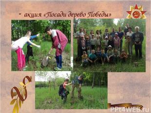- акция «Посади дерево Победы»