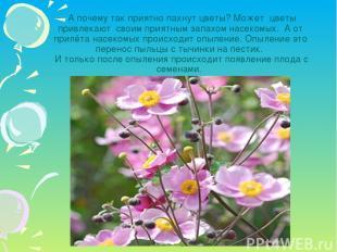 А почему так приятно пахнут цветы? Может цветы привлекают своим приятным запахом