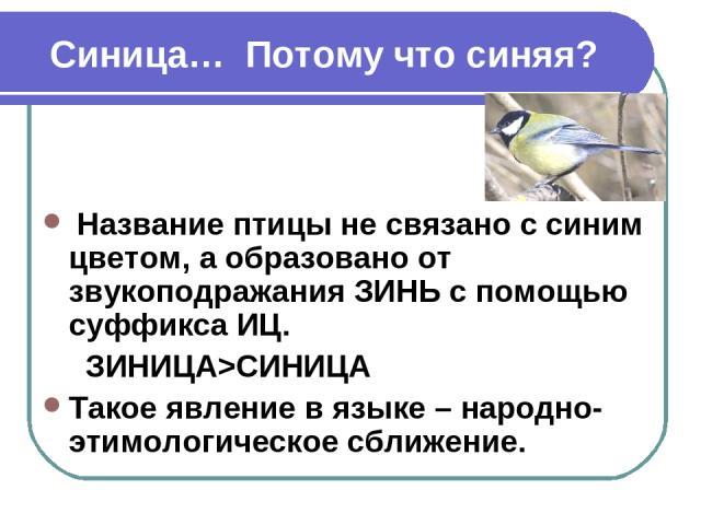 Синица… Потому что синяя? Название птицы не связано с синим цветом, а образовано от звукоподражания ЗИНЬ с помощью суффикса ИЦ. ЗИНИЦА>СИНИЦА Такое явление в языке – народно-этимологическое сближение.