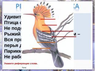 Удивительный народ – Птица с именем удод. Не подстрижен, не причёсан, Рыжий клок