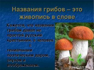 Названия грибов – это живопись в слове Кажется, что названия грибам давал не про