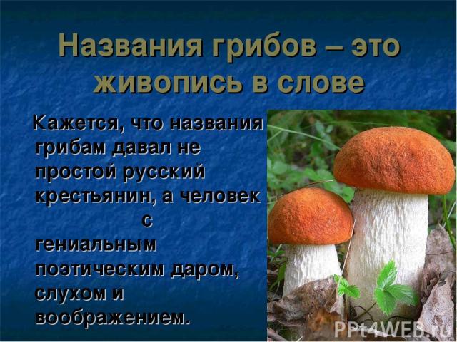 Названия грибов – это живопись в слове Кажется, что названия грибам давал не простой русский крестьянин, а человек с гениальным поэтическим даром, слухом и воображением.
