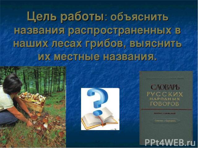 Цель работы: объяснить названия распространенных в наших лесах грибов, выяснить их местные названия.