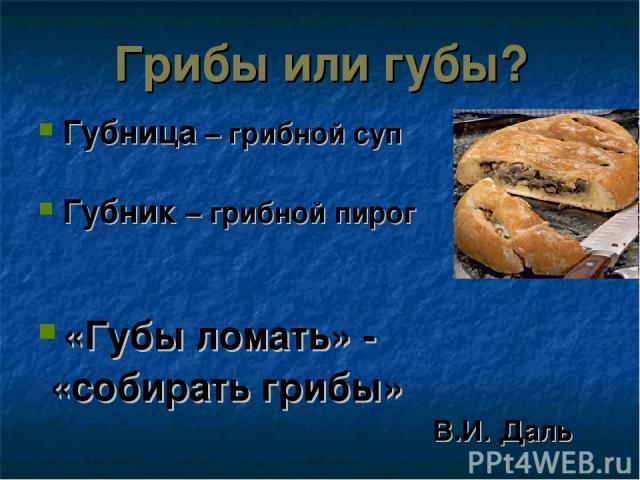 Грибы или губы? Губница – грибной суп Губник – грибной пирог «Губы ломать» - «собирать грибы» В.И. Даль