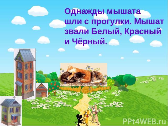 Однажды мышата шли с прогулки. Мышат звали Белый, Красный и Чёрный.