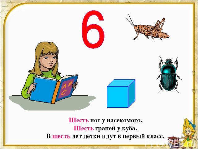 Шесть ног у насекомого. Шесть граней у куба. В шесть лет детки идут в первый класс.