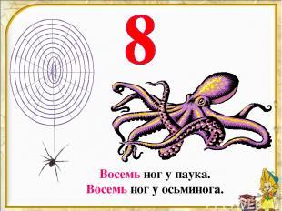 Восемь ног у паука. Восемь ног у осьминога.
