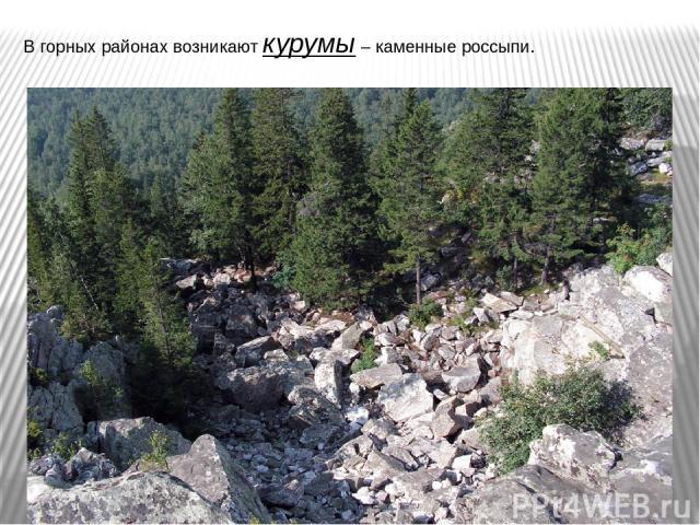 В горных районах возникают курумы – каменные россыпи.
