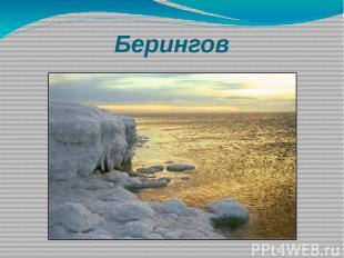 Берингов