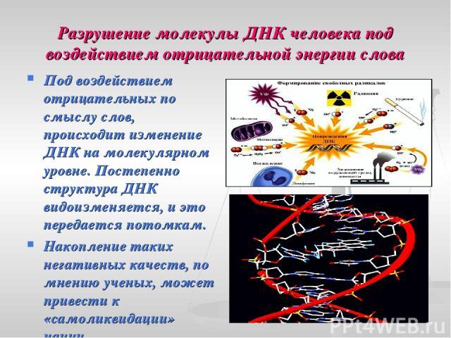 Разрушение молекулы ДНК человека под воздействием отрицательной энергии слова Под воздействием отрицательных по смыслу слов, происходит изменение ДНК на молекулярном уровне. Постепенно структура ДНК видоизменяется, и это передается потомкам. Накопле…