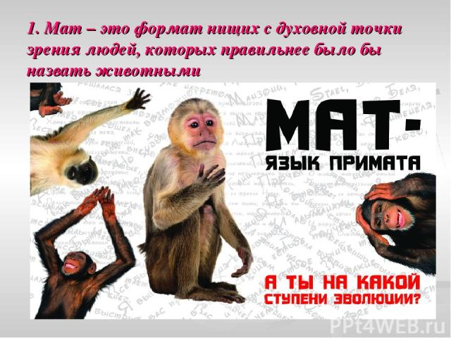 1. Мат – это формат нищих с духовной точки зрения людей, которых правильнее было бы назвать животными
