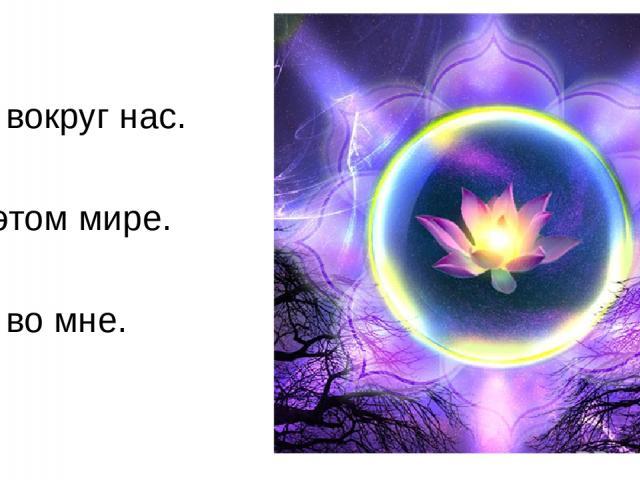 Мир вокруг нас. Я в этом мире. Мир во мне.
