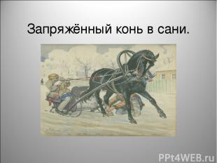 Запряжённый конь в сани.