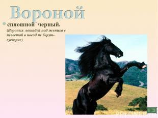 сплошной черный. (Вороных лошадей под жениха с невестой в поезд не берут- суевер