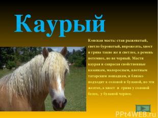 Каурый Конская масть: стан рыжеватый, светло буроватый, впрожелть, хвост и грива