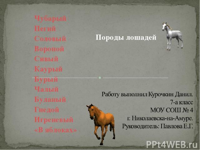 Чубарый Пегий Соловый Вороной Сивый Каурый Бурый Чалый Буланый Гнедой Игреневый «В яблоках» Породы лошадей