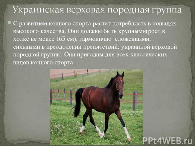 С развитием конного спорта растет потребность в лошадях высокого качества. Они должны быть крупными(рост в холке не менее 165 см), гармонично сложенными, сильными в преодолении препятствий, украинкой верховой породной группы. Они пригодны для всех к…