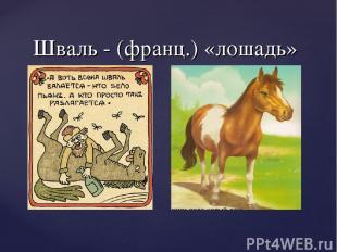 Шваль - (франц.) «лошадь»