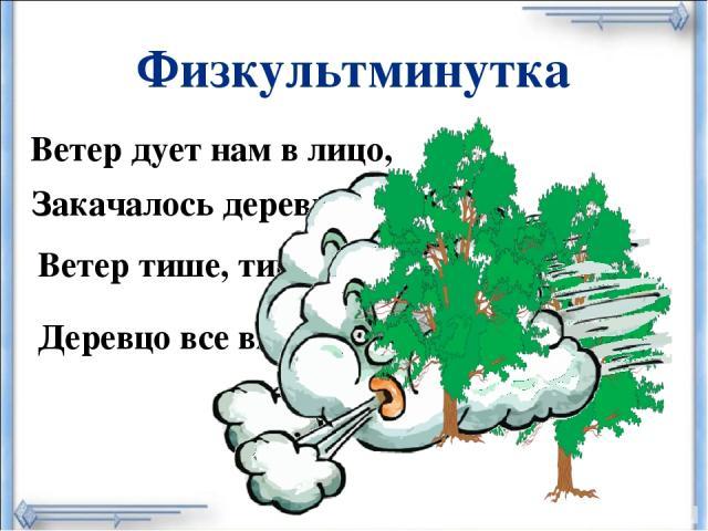 Физкультминутка Ветер дует нам в лицо, Закачалось деревцо. Деревцо все выше, выше. Ветер тише, тише, тише,