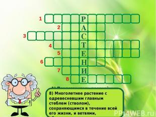 Р А С Т Е Н И Е 1 2 3 4 5 6 7 8 1) Представитель древнейших растений. Листья раз