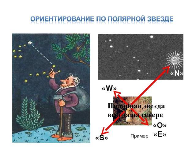 «O» «Е» «S» Полярная звезда всегда на севере Пример «N» «W»