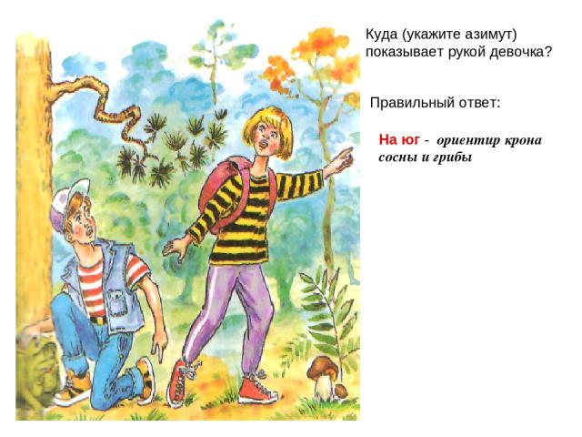 Вопрос 2 Куда (укажите азимут) показывает рукой девочка? Правильный ответ: На юг - ориентир крона сосны и грибы