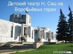 Детский театр Н. Сац на Воробьёвых горах