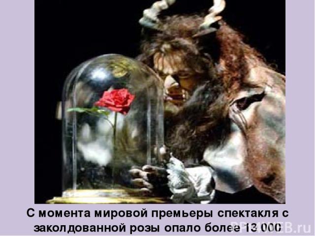 С момента мировой премьеры спектакля с заколдованной розы опало более 13 000 лепестков