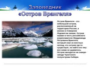 Остров Врангеля - это небольшой остров, расположенный на территории России, а им