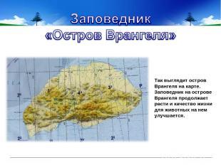 Так выглядит остров Врангеля на карте. Заповедник на острове Врангеля продолжае
