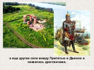 а еще другие сели между Припятью и Двиною и назвались дреговичами,