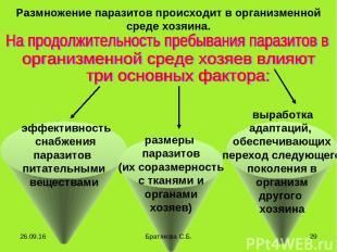 эффективность снабжения паразитов питательными веществами Размножение паразитов