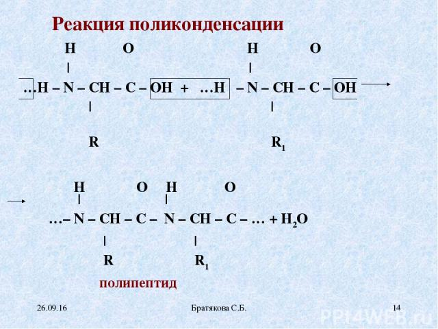 Реакция поликонденсации H O H O | ║ | ║ …H – N – CH – C – OH + …H – N – CH – C – OH | | R R1  H O H O | ║ | ║ …– N – CH – C – N – CH – C – … + H2O | | R R1 полипептид * Братякова С.Б. * Братякова С.Б.