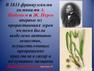 В 1833 французскими химиками А. Пайеном и Ж. Персо впервые из прорастающих зерен