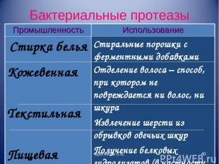 Бактериальные протеазы Братякова С.Б. * Промышленность Использование Стирка бель