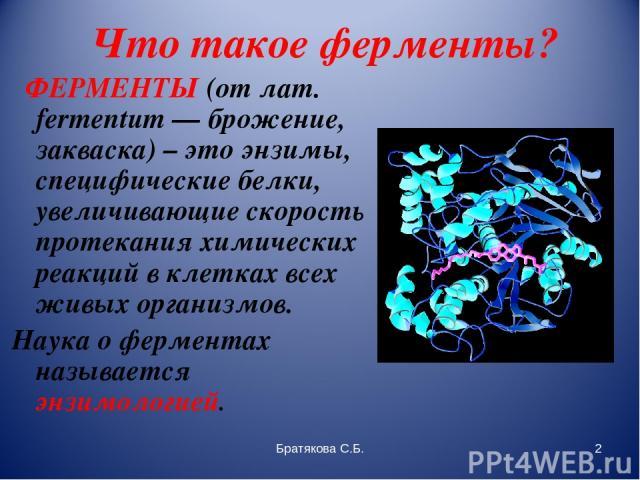 Что такое ферменты? ФЕРМЕНТЫ (от лат. fermentum — брожение, закваска) – это энзимы, специфические белки, увеличивающие скорость протекания химических реакций в клетках всех живых организмов. Наука о ферментах называется энзимологией. Братякова С.Б. …