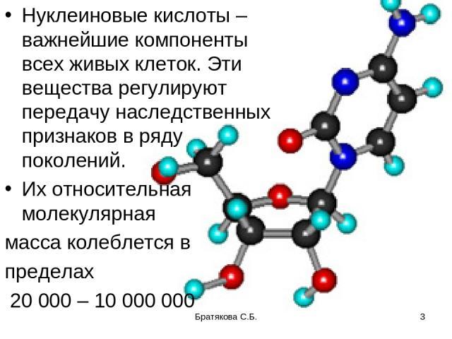 Нуклеиновые кислоты – важнейшие компоненты всех живых клеток. Эти вещества регулируют передачу наследственных признаков в ряду поколений. Их относительная молекулярная масса колеблется в пределах 20 000 – 10 000 000 Братякова С.Б. * Братякова С.Б.
