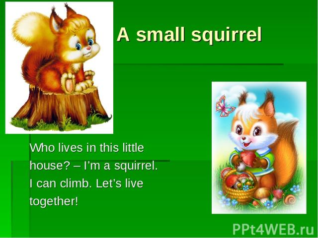 A small squirrel Who lives in this little house? – I'm a squirrel. I can climb. Let's live together!